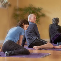Group Feldenkrais Classes aka Awareness Through Movement with Sheri Cohen in Seattle
